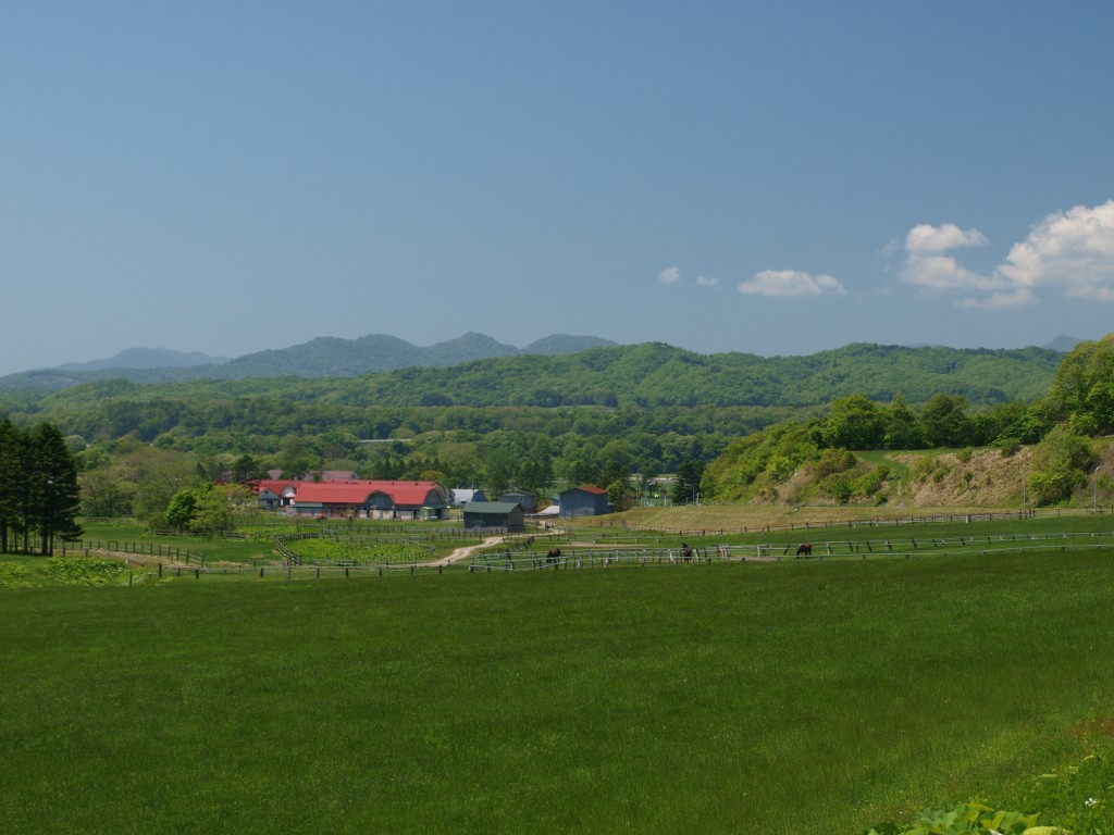浦河町の牧場(隣町かも)